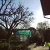 Oh sunny Sunday, could you please end on next Friday?  #yeah  #parzelle15 #gardening #sundaymood