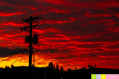 A Pacific Northwest Crush: A Dramatic Sunset (Part 152): Joyful Flames (In Technicolor) (Vintage Edition)