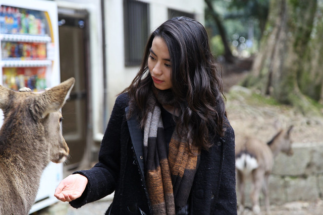 Alysta with a Deer, Nara
