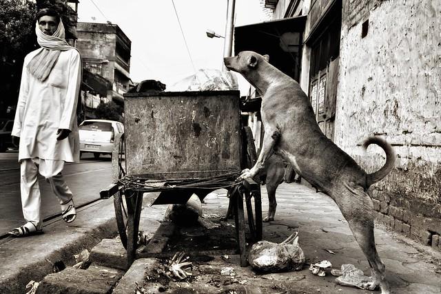 Streetphotography, India