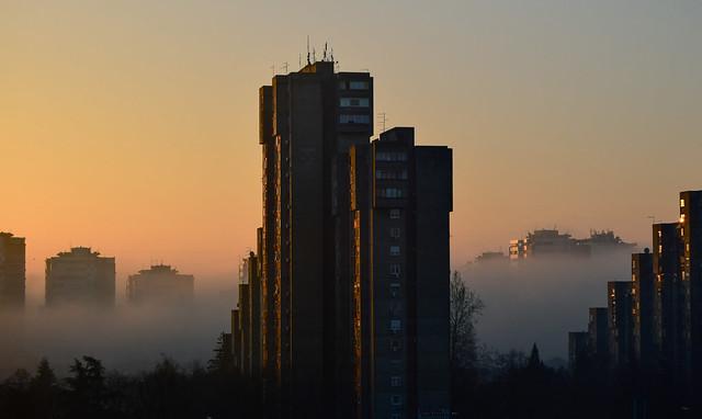 skyscrapers in fog