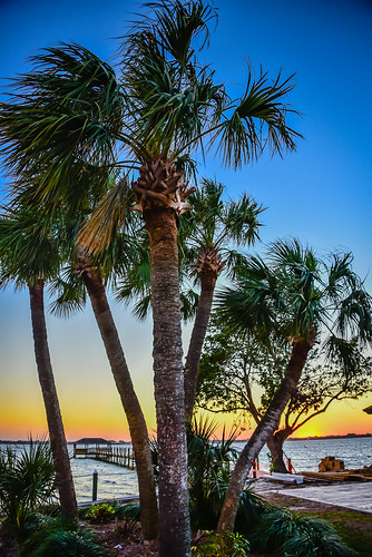 melbournebeach florida unitedstates us sunset over indian river melbourne beach fl fla atlantic ocean bay cove creek branch water palm tree trees palms