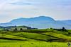Au loin, le Mont Zaccar domine les terres fertiles de Boumedfaa