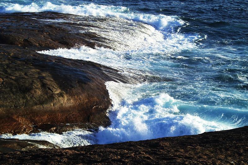 Aditi-Goenka---The-Wild-Sea_