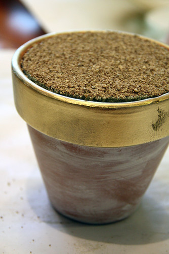 Pot-with-gravel-on-top