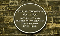 Photo of William Thompson brown plaque