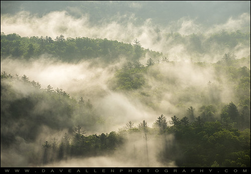 morning trees mist mountains nature fog nc highlands foggy northcarolina rays highlandsnc