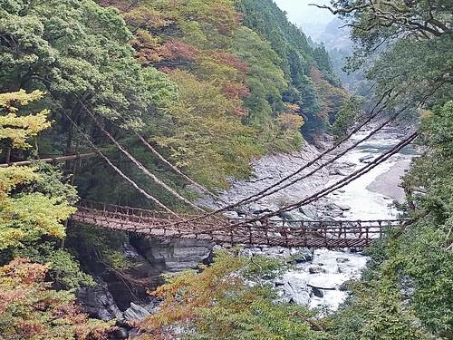【写真】祖谷のかずら橋