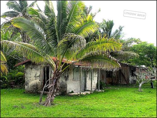 Avatele House
