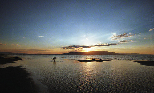 sunset lake film beach analog bay utah waves shore provo utahlake sandybeach filmphotography analogphotgraphy provobay