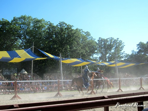Joust Fight