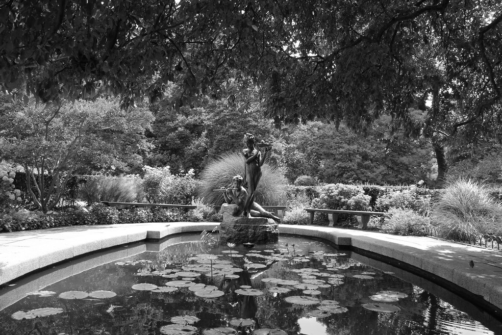 English Garden in Black and White