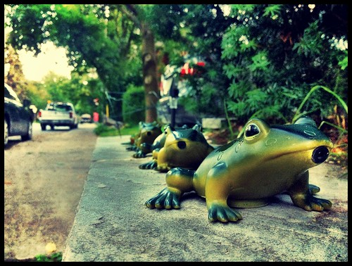 Castlewood Frogger - #220/365 by PJMixer