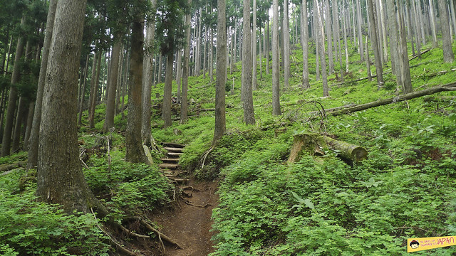 Hiking Mt. Nabewari - day trip from Tokyo 5