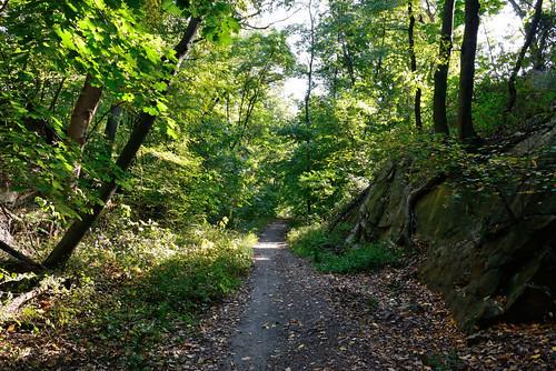 Van Cortlandt Park's Bridle Path