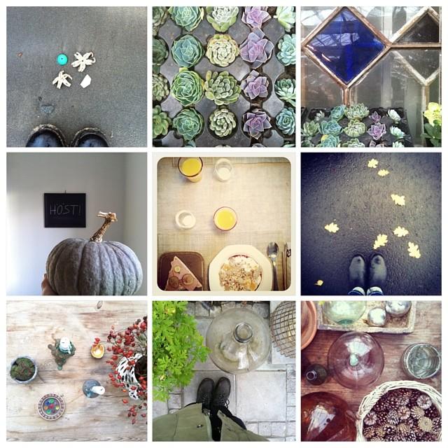 Min vecka #collage