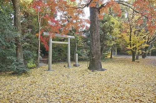 【写真】紅葉 : 上御霊神社