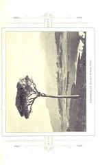 """British Library digitised image from page 49 of """"Ceylon ... Mit 39 Bildern und 1 Karte. 8. Tausend"""""""