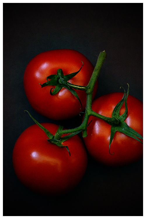 vine ripened tomatoes© by Haalo