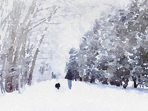 Winter walk on the Silvercreek Trail by @klawrenc