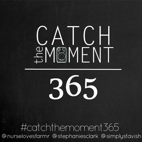 Catch the Moment 365