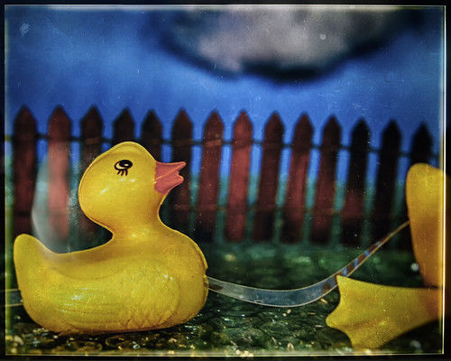 Plastic Rubber Duckies by hbmike2000