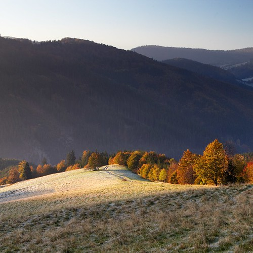 wood travel autumn trees sun mountain mountains nature colors grass leaves sunshine weather forest sunrise season square outdoors landscapes view place hill meadow sunny science naturereserve czechrepublic beskydy canon5dmarkii moraviansilesianregion instagram hornílomná dolnílomná kamenitý mionši