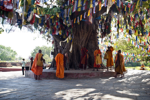 travel nepal portrait people tree men travelling garden asian asia buddha candid buddhist flag monk buddhism flags monks portraiture nepalese prayerflags buddhisttemple pilgrim nepali pilgrims prayerflag southasia buddhistmonks southasian buddhistmonk travelphotography lumbini candidportraiture rupandehi rupandehidistrict