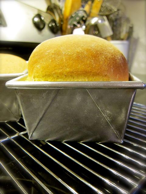 Daily Bread: Semolina Loaf, Bialys, and Morning Buns