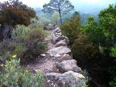 Le sentier de Sud Balardia : reconnaissance vers l'Est