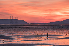 Dawn, Udale Bay, Black Isle