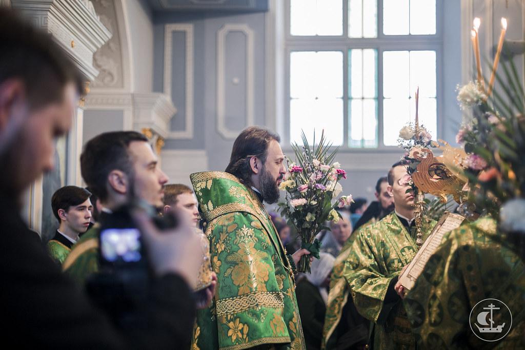 8-9 апреля 2017, Вход Господень в Иерусалим (Вербное воскресенье) / 8-9 April 2017, The Entry of the Lord into Jerusalem (Palm Sunday)