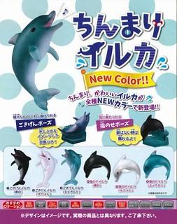 EPOCH「指尖上的海豚」第二彈新色登場!ちんまりイルカ NewColor