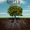 149 Rooted One
