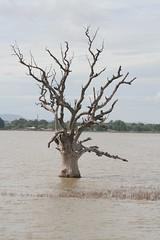 Myanmar - Mandalay