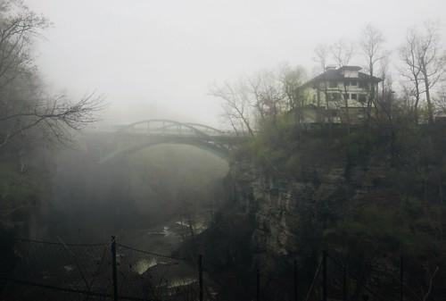 Morning walk on a foggy day