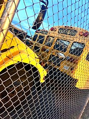 Other Various Buses At Pioneer Yard, Bus#9036 was my bus in the 7th grade!