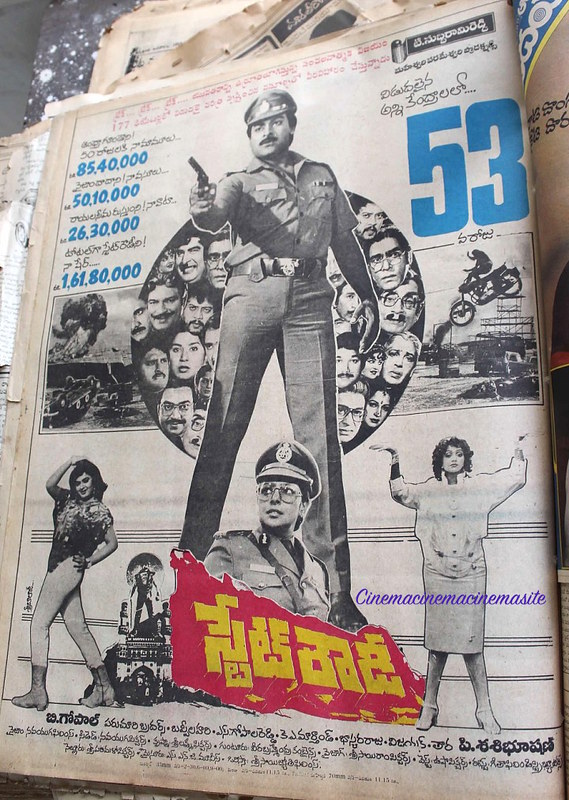 State Rowdy 50 days share