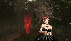 Sorrow Of The Raven Queen