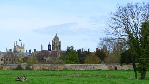 Cambridge View