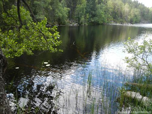 park lake nature nikon national coolpix kansallispuisto aw100 helvetinjärvi toughcamera helvetinjärven