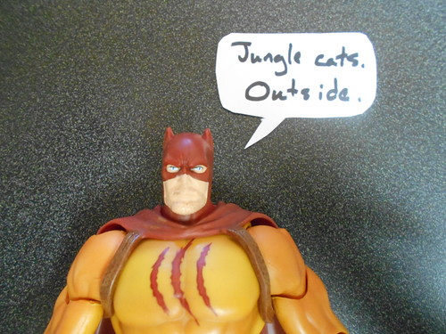 Catman (3)