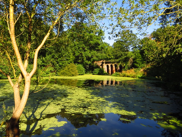 The Viaduct Pond