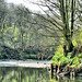 The Beautiful Irwell, Kersal Dale and the Cliff (9761244225)