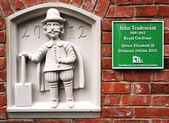 Photo of John Tradescant green plaque