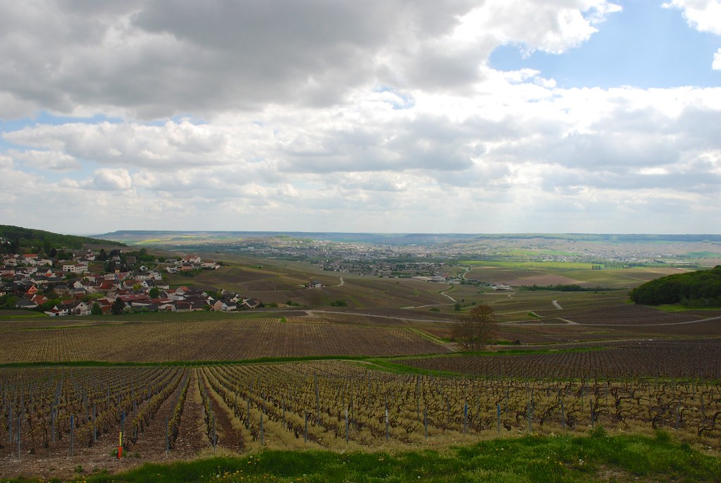 Elevation of cuisles france maplogs for Champagne marne