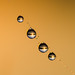 Four drops [explore 25/10/13] by Anniison