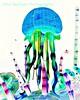 Luminasia Jellyfish Neg 8x10