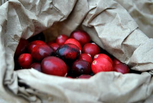 Cranberries-001