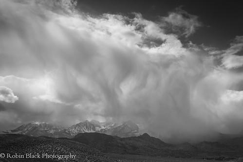 Winter Squall in Monochrome (Eastern Sierra)